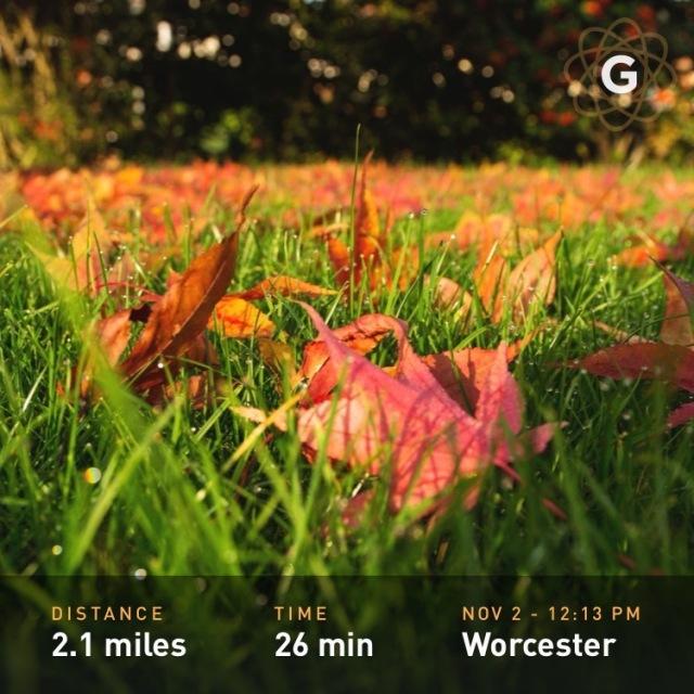 Autumn Two Mile Run